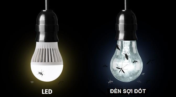 Đèn led có thu hút côn trùng hay không ?