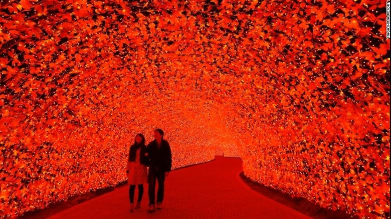 Nhật Bản: Lễ hội ánh sáng mùa đông rực rỡ với 8 triệu bóng đèn LED - Ảnh 1
