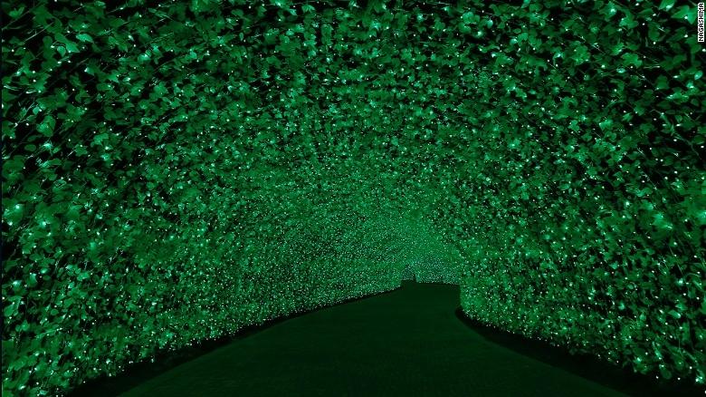 Nhật Bản: Lễ hội ánh sáng mùa đông rực rỡ với 8 triệu bóng đèn LED - Ảnh 5