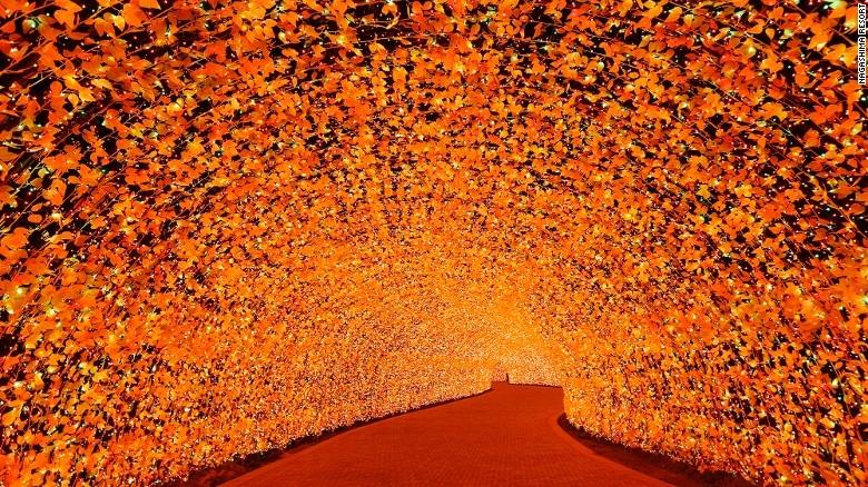 Nhật Bản: Lễ hội ánh sáng mùa đông rực rỡ với 8 triệu bóng đèn LED - Ảnh 6