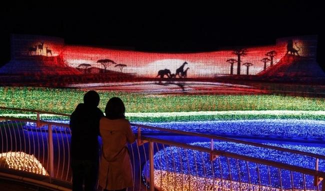 Nhật Bản: Lễ hội ánh sáng mùa đông rực rỡ với 8 triệu bóng đèn LED