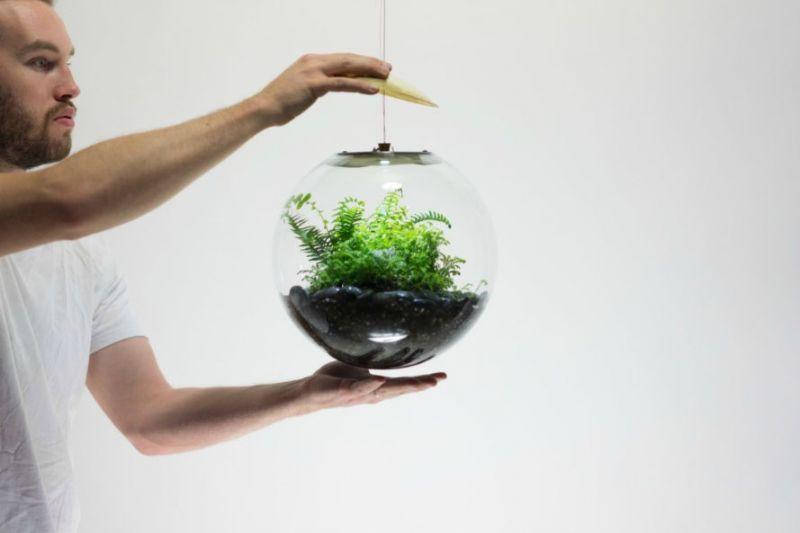 Bóng đèn LED sinh thái: tuyệt chiêu tạo không gian xanh cho ngôi nhà