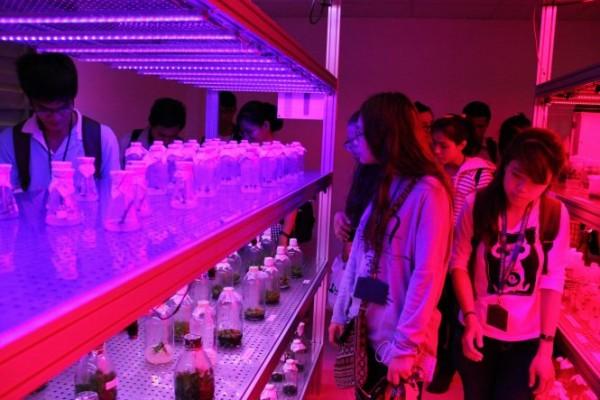 Phòng thí nghiệm ứng dụng đèn LED chiếu sáng đầu tiên tại Việt Nam