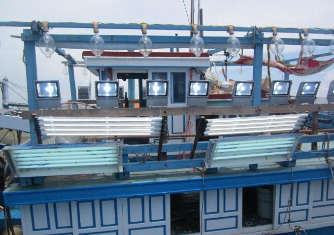 Đèn LED ứng dụng trong khai thác thủy sản